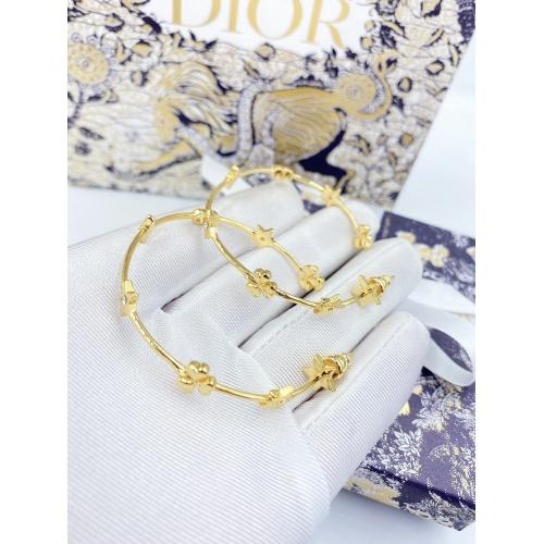 Christian Dior Earrings #841094
