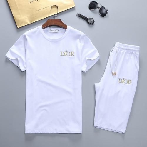 Christian Dior Tracksuits Short Sleeved For Men #841627