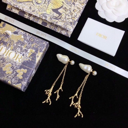 Christian Dior Earrings #843198