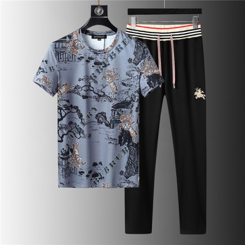 Burberry Tracksuits Short Sleeved For Men #843936