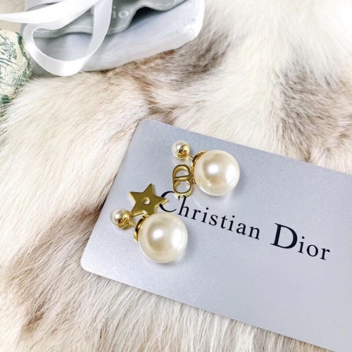 Christian Dior Earrings #844985