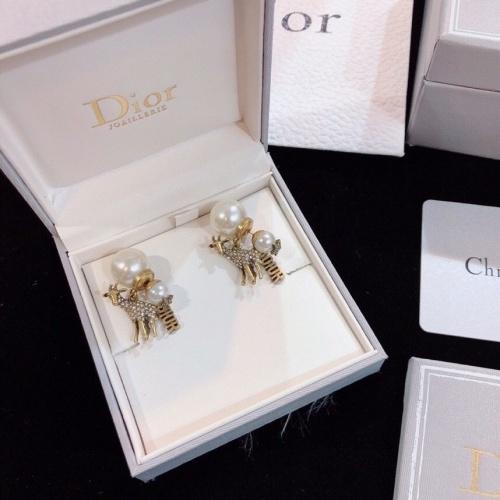 Christian Dior Earrings #845398