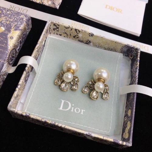 Christian Dior Earrings #846211