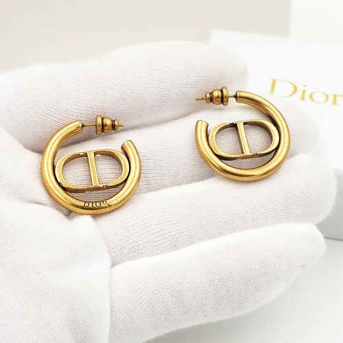 Christian Dior Earrings #846879