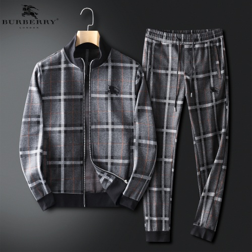 Burberry Tracksuits Long Sleeved For Men #847799