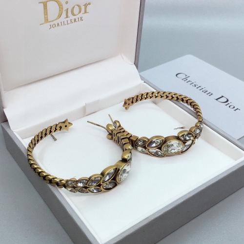 Christian Dior Earrings #848498