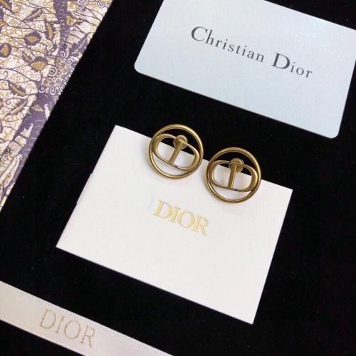 Christian Dior Earrings #849170