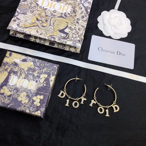 Christian Dior Earrings #849473