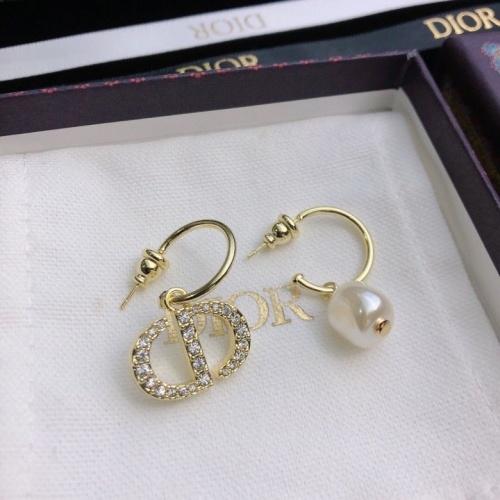 Christian Dior Earrings #849964