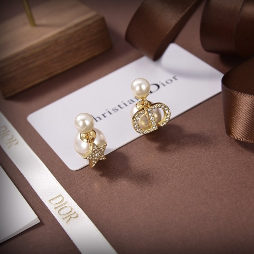 Christian Dior Earrings #849969