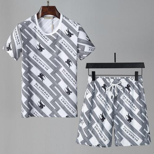 Burberry Tracksuits Short Sleeved For Men #850069