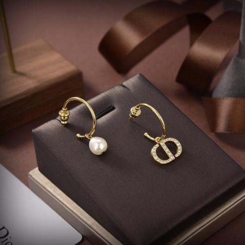 Christian Dior Earrings #850393
