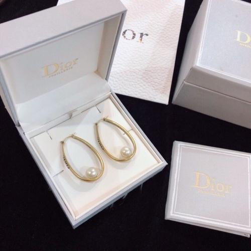 Christian Dior Earrings #850409