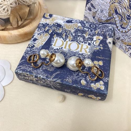 Christian Dior Earrings #850837