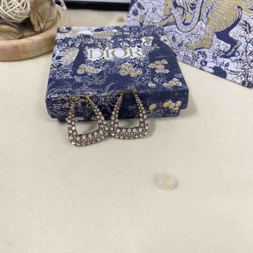 Christian Dior Earrings #850853