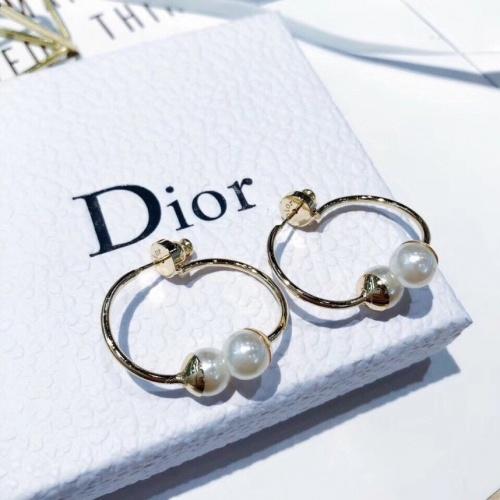Christian Dior Earrings #851102