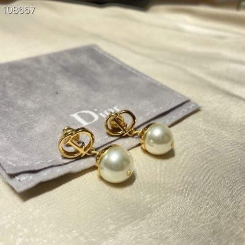 Christian Dior Earrings #851105