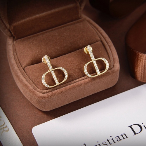 Christian Dior Earrings #851320