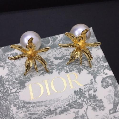 Christian Dior Earrings #851979