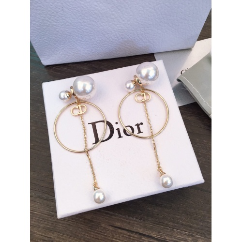 Christian Dior Earrings #852677