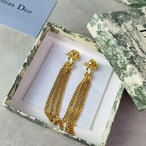 Christian Dior Earrings #852692