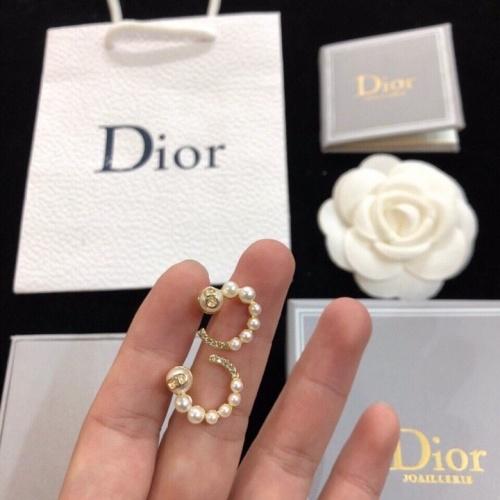 Christian Dior Earrings #853118