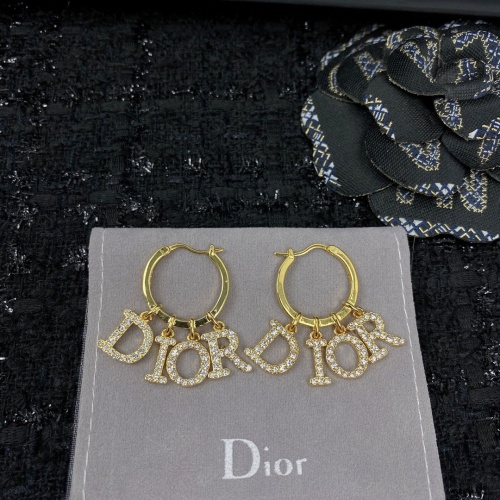 Christian Dior Earrings #853169