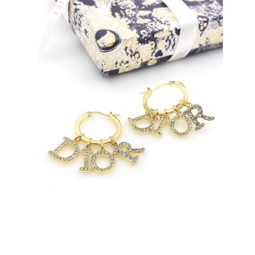 Christian Dior Earrings #853698