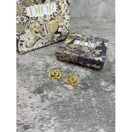 Christian Dior Earrings #853703