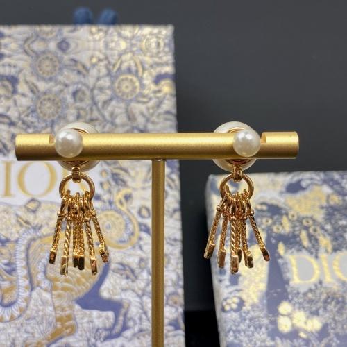 Christian Dior Earrings #854211