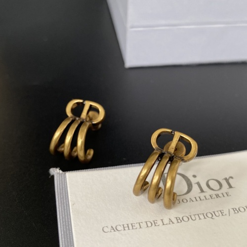 Christian Dior Earrings #854554