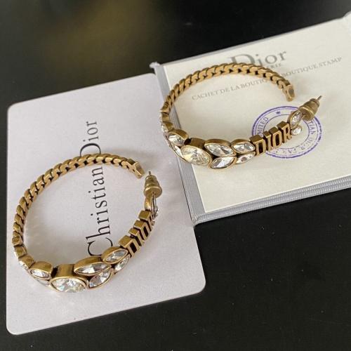Christian Dior Earrings #854919