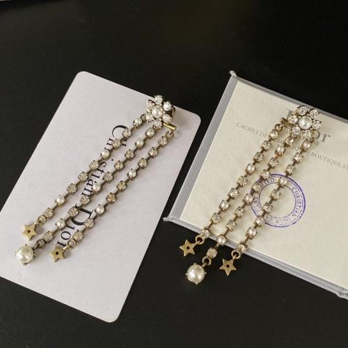 Christian Dior Earrings #854920