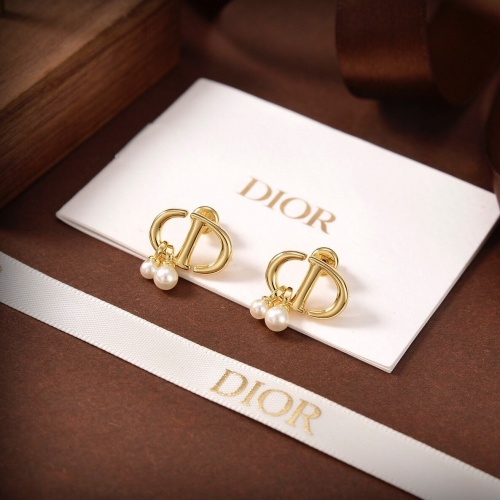 Christian Dior Earrings #856023