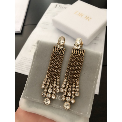 Christian Dior Earrings #856031