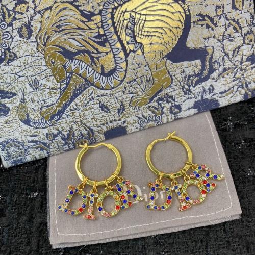 Christian Dior Earrings #856032