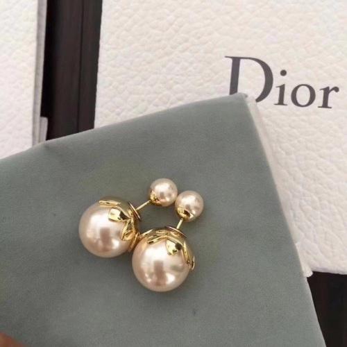 Christian Dior Earrings #856503