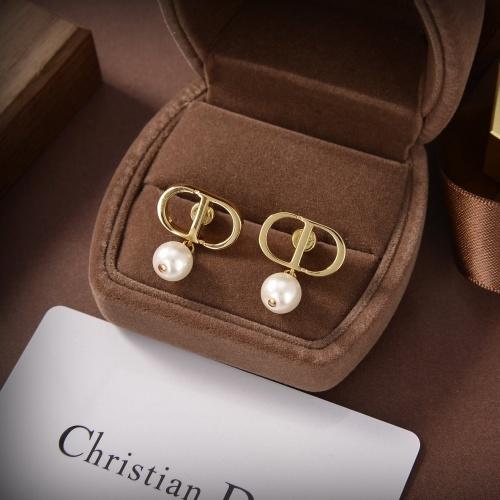 Christian Dior Earrings #857213