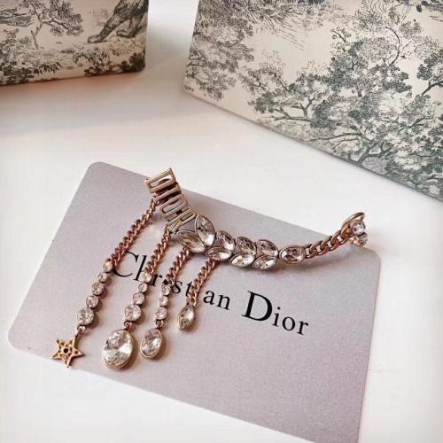 Christian Dior Earrings #857216