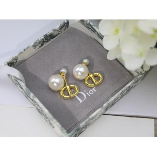 Christian Dior Earrings #857234