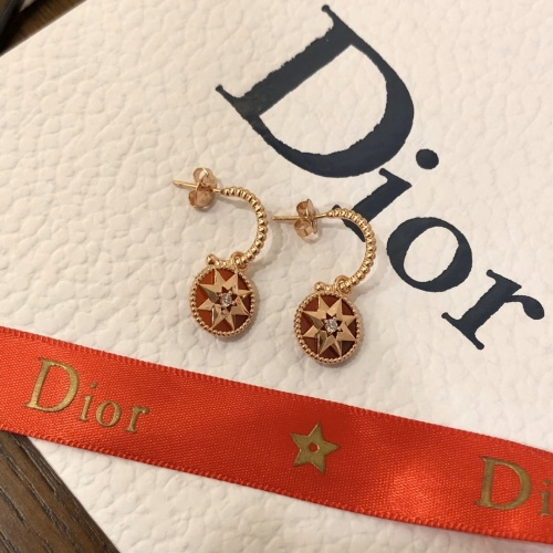 Christian Dior Earrings #857534