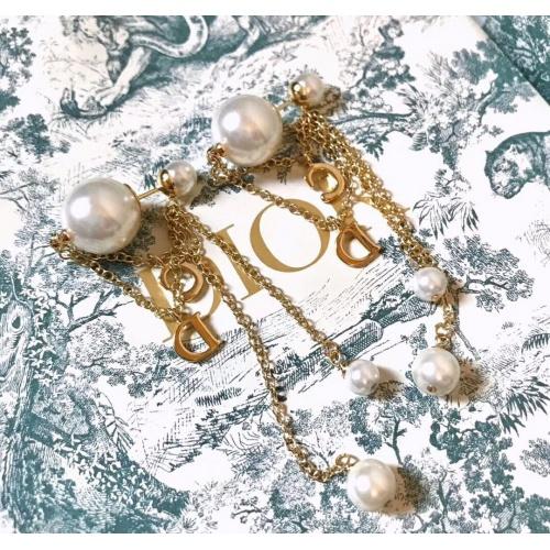 Christian Dior Earrings #857925