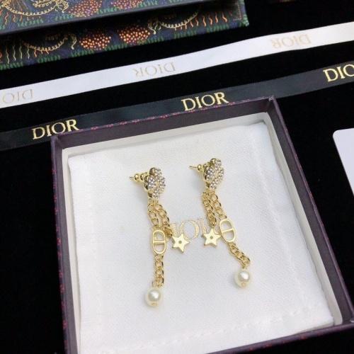 Christian Dior Earrings #857934