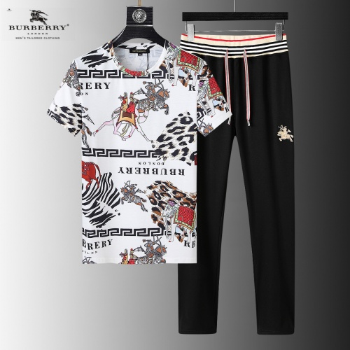 Burberry Tracksuits Short Sleeved For Men #858016
