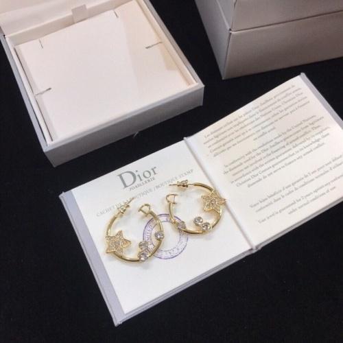 Christian Dior Earrings #858902