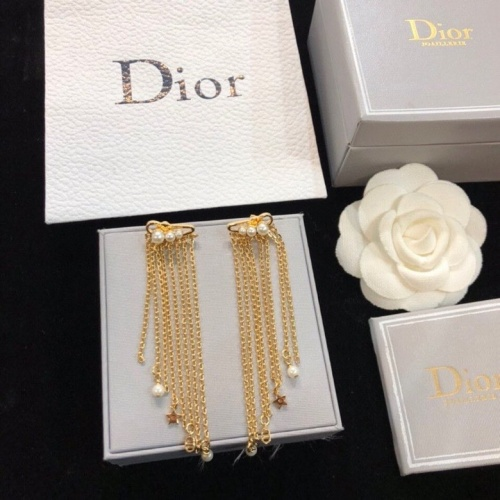 Christian Dior Earrings #858911