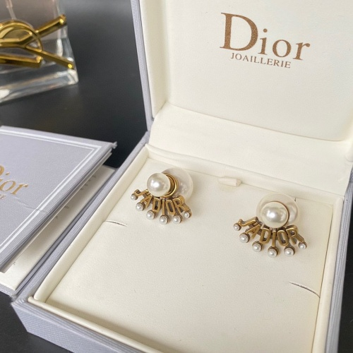 Christian Dior Earrings #859013