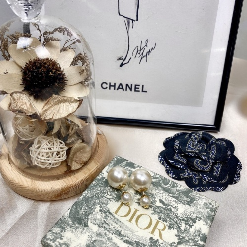 Christian Dior Earrings #859043