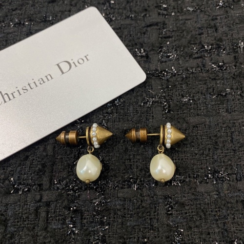 Christian Dior Earrings #859168