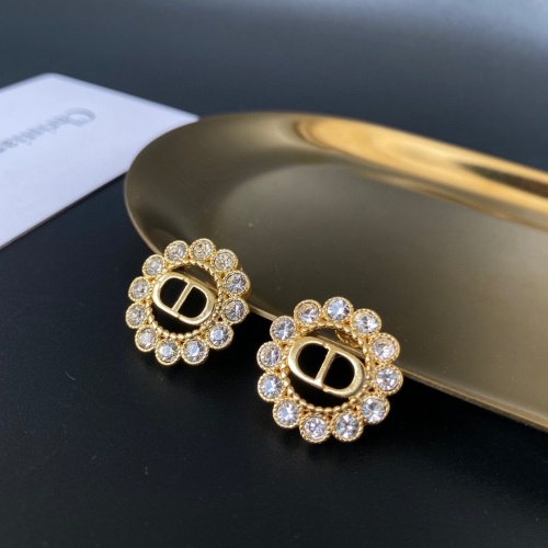 Christian Dior Earrings #860377